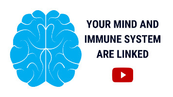 Immune Response | Ways to Boost Your Immune System & Low Immunity